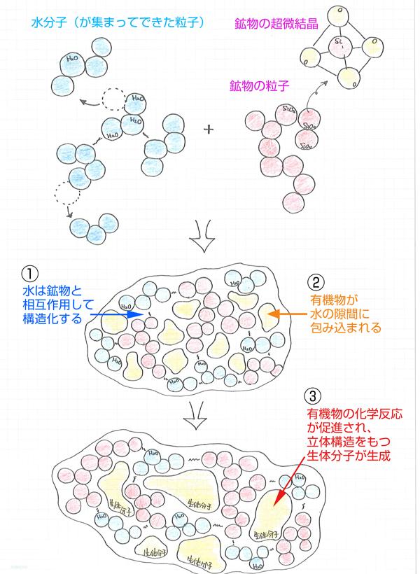 生体分子の生成