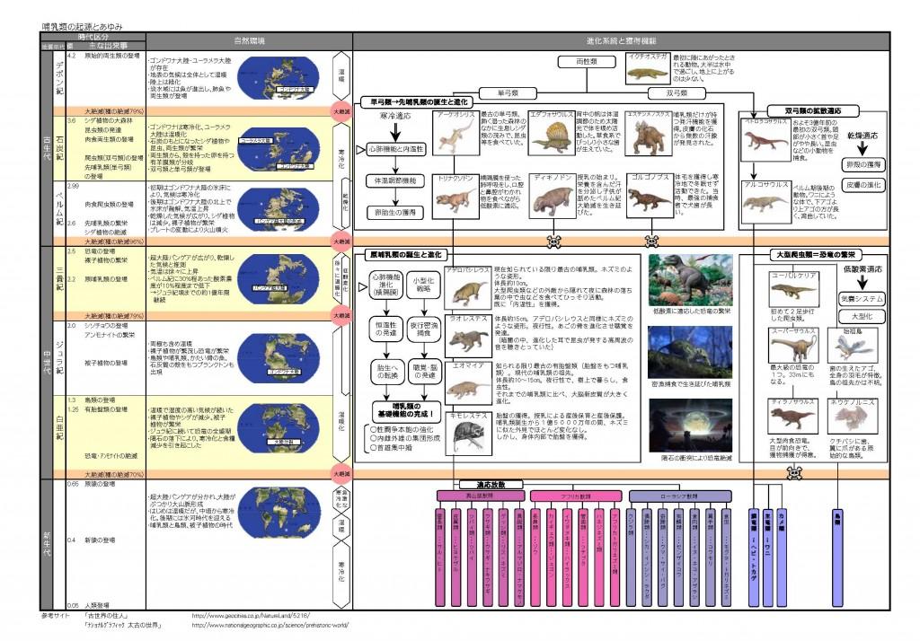 哺乳類の進化図解(全体) (1)