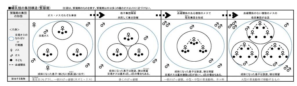 哺乳類の集団構造
